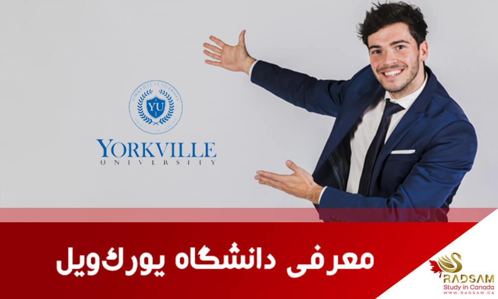 11 مزیت تحصیل در دانشگاه یورک ویل کانادا ویژه رادسام